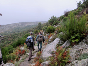 king-of-the-mountain-guides-on-trail