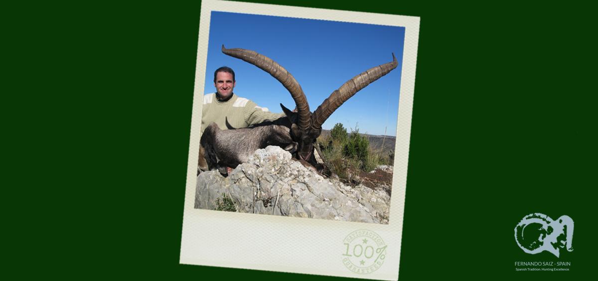 beceite-ibex